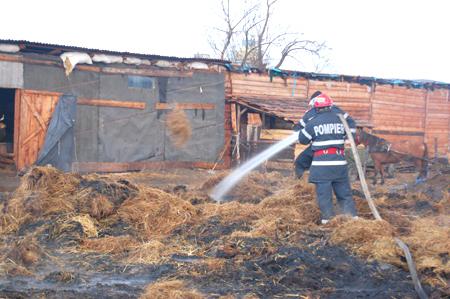 Trei Case Distruse într-un Incendiu în Chitila | Ştiri ...  |Incendiu Chitila